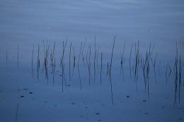 Verdronken verlangens